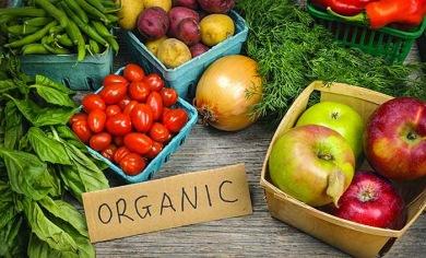 Bahaya dari makanan organik